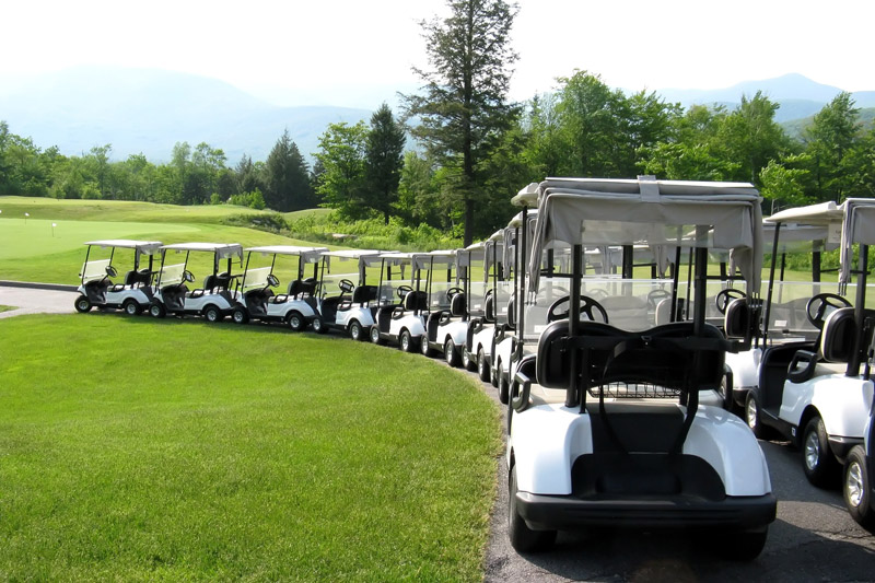 A Line of Golf Carts
